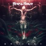 FatefulFinality_Battery