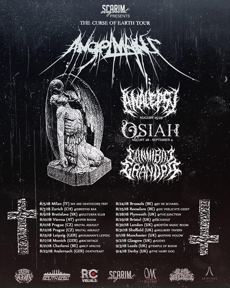 Analepsy tour